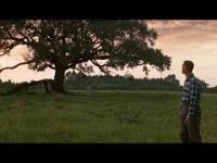 Małomiasteczkowy Forrest Gump