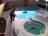 Właściciel psa ratuje go gdy ten wpada do basenu