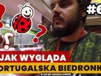 Jak wygląda PORTUGALSKA BIEDRONKA 66