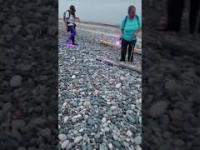 """Znalazła wielki """"yooperlite"""" - świecący kamień"""