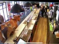 Koń wchodzi do baru...