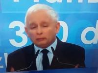 Kaczyński powiedział prawdę o swojej partii