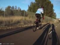 Kangury, jak kierowcy, też nie lubią rowerzystów