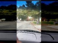 Nastolatek celowo rozjeżdża autem innego nastolatka za domniemaną kradzież ganji
