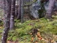 Ziemia oddycha - niesamowite zjawisko