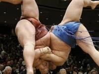 SUMO 98kg vs 200kg
