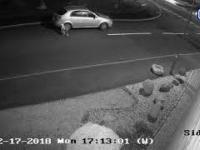 Kutangens tuż przed Świętami porzuca swojego psa na ulicy