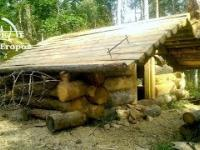 Budowa domu z bali w pojedynkę