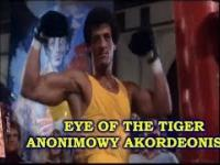 Accordion Cover - Eye of the Tiger - Rocky Music - Survivor - akordeon - Accordion Cover