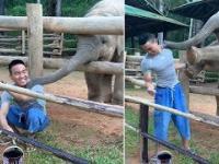 Mały słonik też chce być głaskany