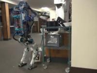 Idealny robot dla firmy kurierskiej
