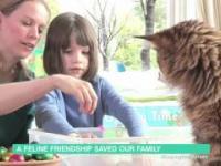 Kot pomaga dziecku z autyzmem