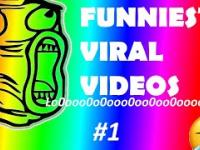[Cool&Funny] Best Viral Videos 2019 Compilation 1