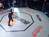 Pozytywne grubaski w MMA