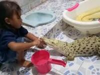 Higiena zwierzątka domowego
