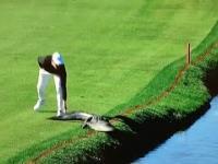 Golf to sport dla prawdziwych mężczyzn
