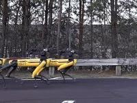 Co potrafią roboty z Boston Dynamics?