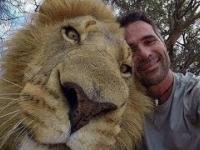 Kiedy masz dość ludzi i zaprzyjaźniasz się z lwem