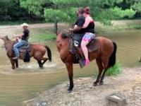 Koń odrzucił jeźdźca