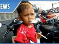Ma niecałe 3 lata i wypala 40 papierosów dziennie.