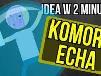 Komory echa - inkubatory zaślepionych fanatyków