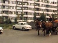 Na Bródnie (1983) - Dokumentalna miniatura, gdzie prowincja spotyka wielką płytę.