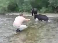 Facet karmi niedźwiedzie z ręki