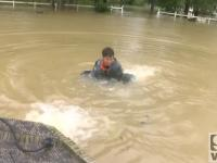 Facet ratuje kobietę i jej psa z tonącego samochodu.