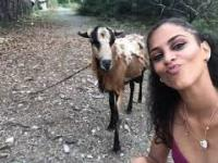 Selfie z kozą