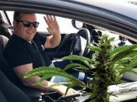 Marihuana z dostawą pod dom