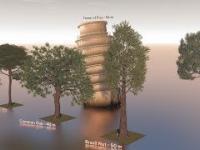 Porównanie wielkości drzew