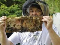Człowiek, który zakochał sie w pszczołach od pierwszego ...użądlenia