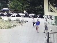 Strażnik Miejski z dużą siłą kopnął małego psa