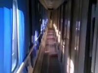 Cień w pociągu