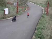 Madka pokazuje dzieciom jak się jeździ quadem