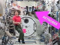 NASA Bumble Astrobee - pierwszy samodzielny lot na ISS