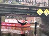 Ekoaktywiści walczą z przepływającymi łódkami
