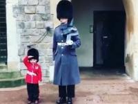 Chłopiec salutuje żołnierzom gwardii zamku Windsor