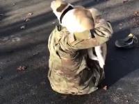 Ponowne spotkanie z ukochanym psem po dwóch latach na misji