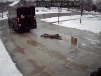 Bohaterski kurier UPS. Dostarcza paczkę prosto do rączek odbiorcy