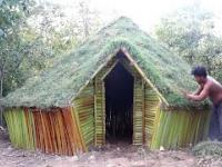 Budowac dom w dżungli