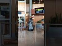 Wzruszające przywitanie na lotnisku
