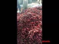 Jaki jest największy sekretem suszonego chilli?