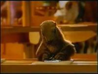 """A świstak siedzi i zawija w te sreberka""- reklama ma już 20 lat"