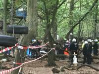 Niemcy wycinają las pod kopalnię węgla brunatnego. Co na to Komisja Europejska? - wPrawo.pl
