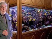 Akwarium morskie w prywatnym mieszkaniu