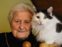 Pani Józefa i jej 100 kotów