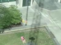 Operator żurawia trolluje kolesia opalającego się na trawce