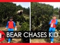 Niedźwiedź za 12 latkiem, ojciec każe mu iść pomału do przodu