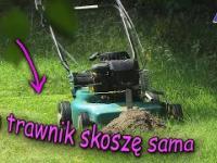 Jak skosić trawę: szybko, łatwo i przyjemnie